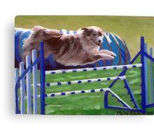 Australian Shepherd Agility Canvas Print