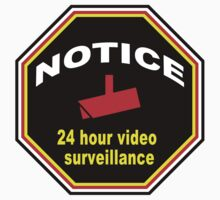 24 Hour Video Surveillance  by snuggles