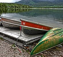 Boats on Pyramid Lake by Gregory Dyer
