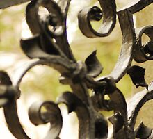 Grave Yard Gate by Sharyl Lewis