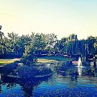 Ponds and Obscurities by omhafez
