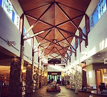 Livermore Public Library by omhafez
