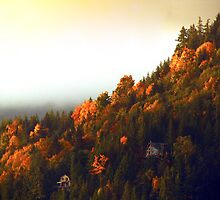 dog mountain dawn - photo by Robert Skelly by axieflics