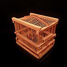 Cricket Cage by Barbara Morrison