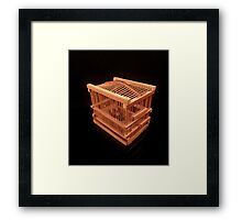 Cricket Cage Framed Print