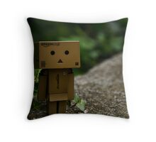 Learn To Focus Throw Pillow