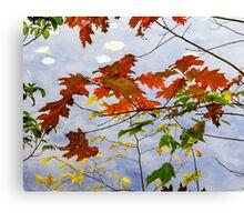 Autumn Shore Canvas Print