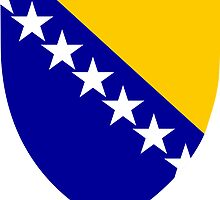 Bosnia and Herzegovina Coat of Arms  by abbeyz71