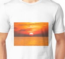 Naturally Filtered Unisex T-Shirt
