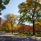 Parkchester in Autumn by W. Lotus