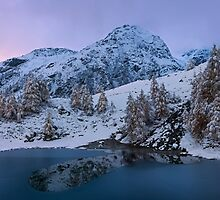 Top of the Lake by Dominique Dubied