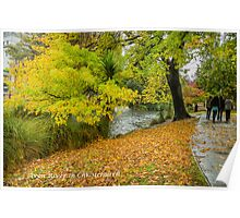Avon River Christchurch Poster