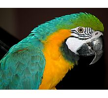 Colourful Photographic Print