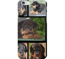 Rottweiler With Got Rott? Message Collage iPhone Case/Skin