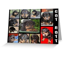 Rottweiler With Got Rott? Message Collage Greeting Card