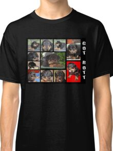 Rottweiler With Got Rott? Message Collage Classic T-Shirt