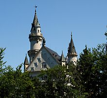 Fairy-Tale Castle by Janone