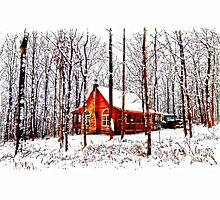 Merry Christmas card by Randy & Kay Branham