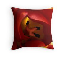 Spring 2013-24 Throw Pillow
