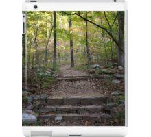 Walkway to Devil's Den iPad Case/Skin