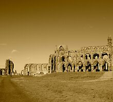 Whitby Abbey by Pickers