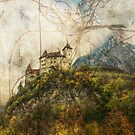 Tangle Mountain by Sarah Vernon