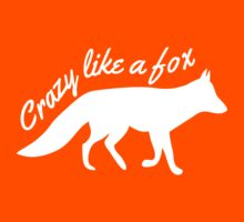 Crazy like a fox by keepers