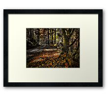 High In The Mountains ~ Fall Colors ~ Framed Print