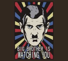 BigBrother Is Watching You by mlike1