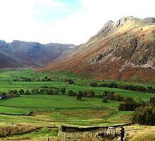 Great Langdale in Autumn by GeorgeOne