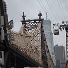 Roosevelt Island Tram, Queensboro Bridge, Roosevelt Island, New York City by lenspiro
