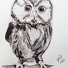 Owl Study by JRobinWhitley