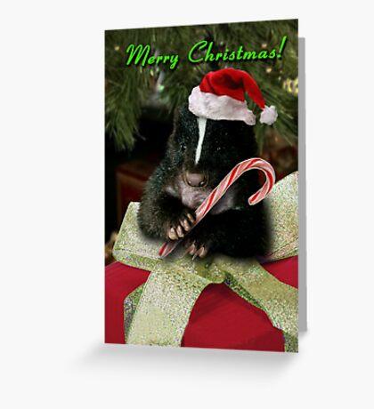 Merry Christmas Skunk Greeting Card
