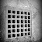 The Grate by katpix