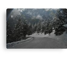 """The new Ice Age"" Canvas Print"