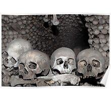 Human bones. Poster