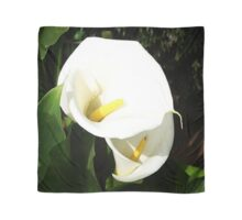 Beautiful White Calla Flowers In Bright Sunlight Scarf