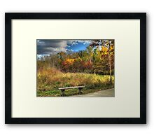 Benched in Autumn Framed Print