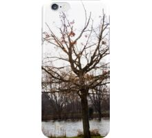 STARK AND BARE iPhone Case/Skin