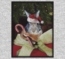 Christmas Bunny Rabbit Kids Clothes