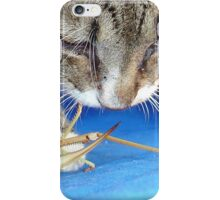 Close Up of A Tabby Cat and Katydid iPhone Case/Skin