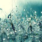 Under the sea. by Beata  Czyzowska Young