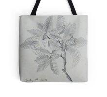 pencil sketch - study of leaves 1880 Tote Bag