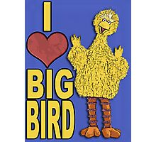I Love Big Bird Photographic Print