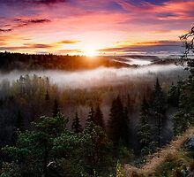 Foggy Sunrise  by Keijo Savolainen