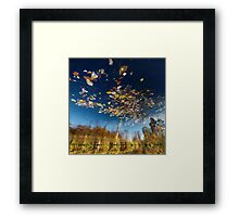 Reflection Tree Framed Print