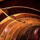 """""""Casa Batlho"""" by Gaudi by Angelika  Vogel"""