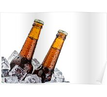 Beers on ice with copyspace isolated on white background Poster