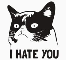 Grumpy Cat hates you! by hannahison