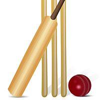 Cricket Wicket by kwg2200